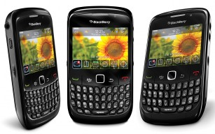 blackberry thumb medium307 192
