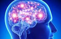 Aprenderte algunos datos de memoria es una herramienta que puedes aprovechar para mejorar tu aprendizaje. Foto:notishop.net