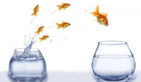 Para poder dirigir un equipo o compañía es necesario tener claro tus creencias y expectativas para poder desarrollar tu actividad profesional dentro de tu ética y moral. Foto:yomedecidi.org