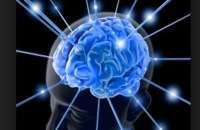 La organización estadounidense Super Scholar dio a conocer su ranking actualizado con las diez personas vivas más inteligentes del mundo. Foto:iprofesional